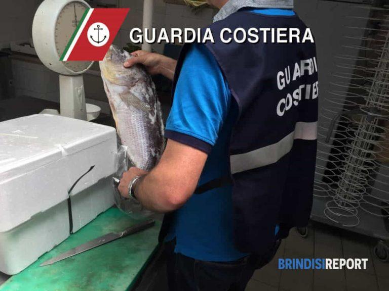 Pesce privo di tracciabilità sequestrato in un ristorante di Ostuni: multato il titolare