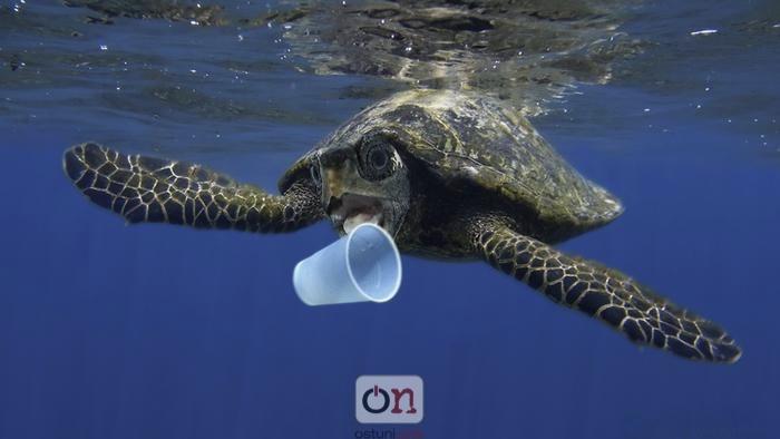 Stop alla plastica sulle spiagge pugliesi: in arrivo un'ordinanza regionale