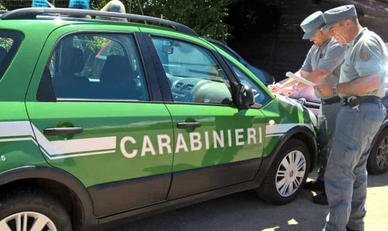 Trasporto illecito di rifiuti, Carabinieri Forestali all'opera nel brindisino