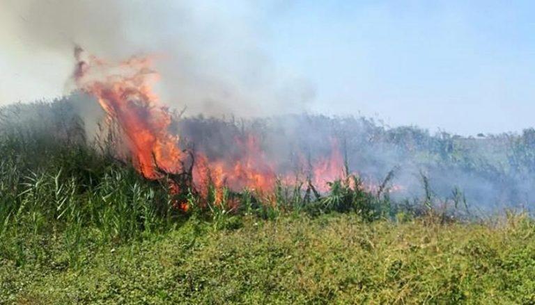 Incendio a Torre Guaceto, Legambiente: «Assoluta necessità di intensificare i controlli nelle aree a rischio»