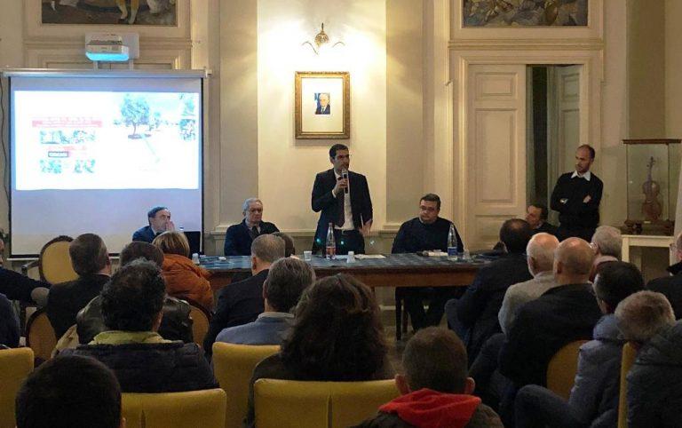 Xylella, unanime il grido d'allarme delle istituzioni per salvare la Piana dei Monumentali