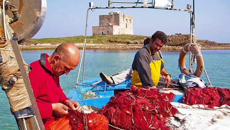 GAL Alto Salento 2020: pubblicati i bandi su pescaturismo, ittiturismo e vendita diretta del pescato