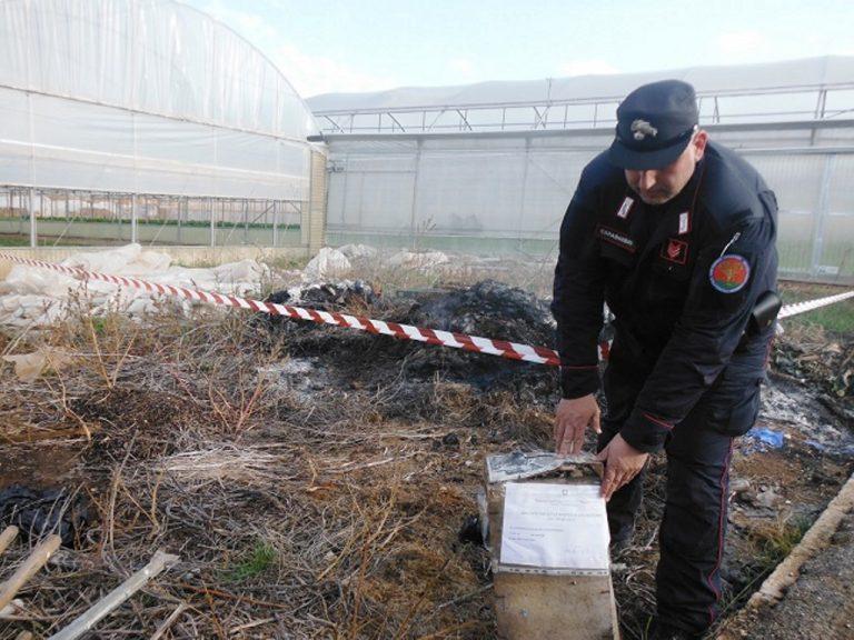 Rogo di rifiuti plastici a Fasano: i Carabinieri Forestali sequestrano un'area di 100 mq