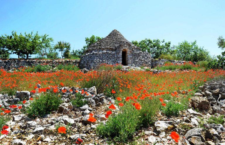 """Turismo sostenibile, nasce il progetto """"Si scrive Valle d'Itria, si legge bellezza"""""""